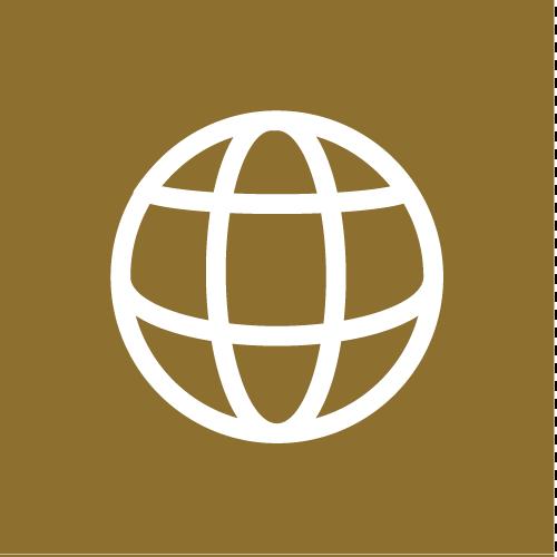Zewo-Standard 17: Internationale Netzwerke