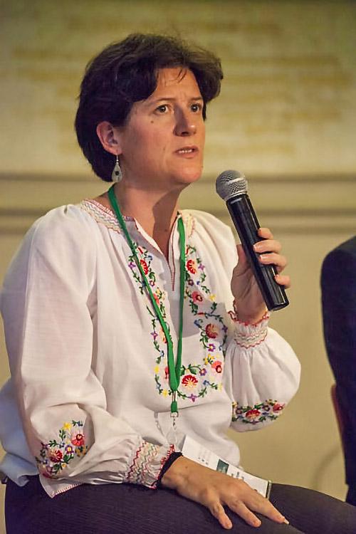 Caroline Vuillemin, Fondation Hirondelle